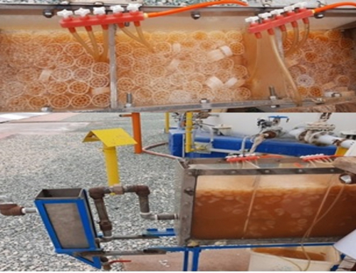 Treatment of Petrochemical Wastewater by Moving Bed Biofilm Reactor Technology